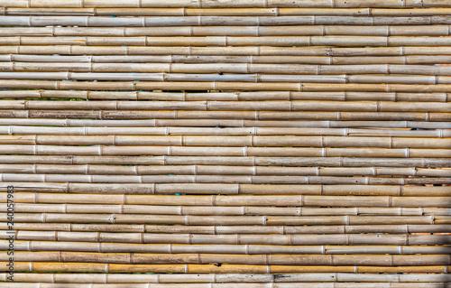Fundo com bambu
