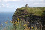 Cliffs of Moher with widflowers