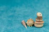 seashells on a blue background - 240163348
