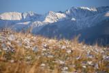 view from Koscielisko village to the Tatra Mountains, Poland