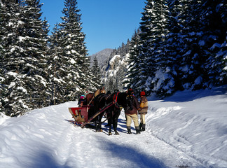 Tatrzanski National Park, Tatry Mountains, Poland: January, 2011 - Chocholowska Valley,