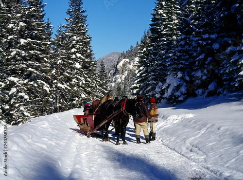 Tatrzanski National Park, Tatry Mountains, Poland: January, 2011 - Chocholowska Valley,