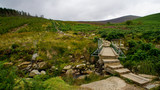 Wooden bridge over the Dargle River on the Wicklow Way hiking trail. Landscape with fir trees and green vegetation on a cloudy day in Wicklow Mountains, Ireland,