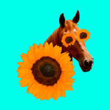 Contemporary art collage. Country horse in sunflowers. Country romantic mood - 240280753