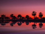 Sunset with silhuettes palm and reflection in swimming pool © kramynina
