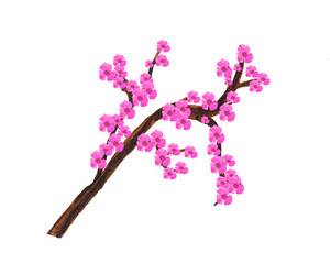 Watercolor composition of a blossoming branch with pink flowers.