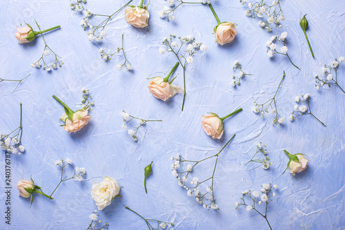 Pattern from fresh white gypsofila and rose flowers on blue textured background.