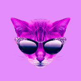 Contemporary art collage. Glamor kitty in stylish glasses - 240418320