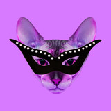 Contemporary art collage. Glamor cat in stylish masquerade mask - 240418339