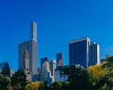 Buildings and skyscrapers of midtown Manhattan above trees, viewed from Central Park of New York City, USA
