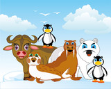 Arctic animals of the north on background of the snow and blocks of ice