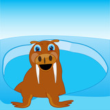 Arctic animal walrus shows from water.Vector illustration