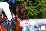 Closeup of a brown horse with rider over the jump on a tournament..