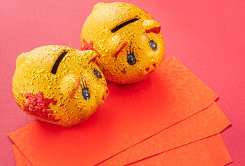 Beautiful and delicious tangerine isolated on red background with chinese new year decorations, and words on the pig means