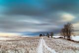 Fototapeta Na sufit - Zima Na Warmii  © jesiotr9