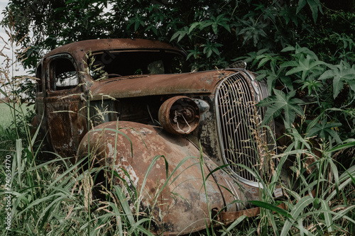 obraz lub plakat old car, burned, rusted, abandoned in the forest