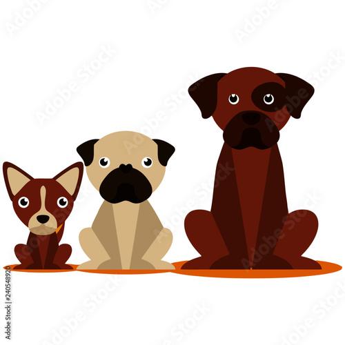3 Cute Dog Set - 240548920