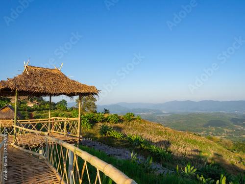 Bamboo bridge with nature background.