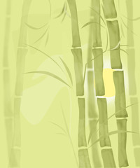 Bamboo illustration plant nature garden illustration © fuzzyfox