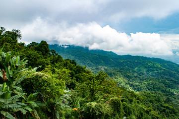 Eine mit Wald bedeckte Berglandschaft - Thailand © marc