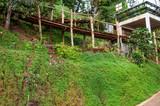 Bambusbrücke an einem Hügel