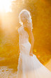 Beautiful bride in sunset rays - 240620911