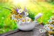 Leinwanddruck Bild - Mortar of medicinal herbs and daisy healing herbs bunch outdoors.