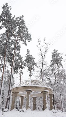 Beautiful colonnade in the snowy park, Bucha Ukraine Winter fresh morning