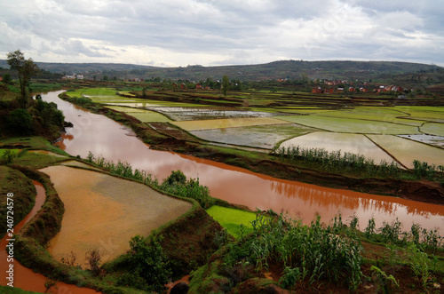 Landscape with the rice fields and Onive river at Antanifotsy,Madagascar