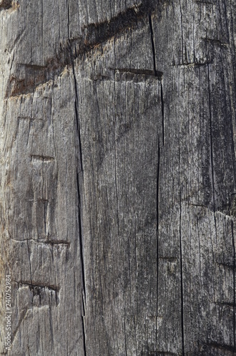Holzstruktur - 240752984