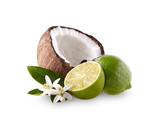 Coconut  with limes on the white background - 240759321