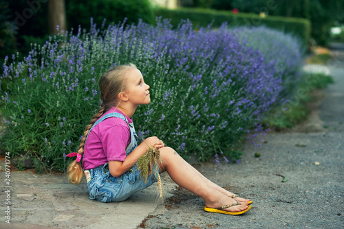 portrait of a girl sitting on the road near the house with lavender - 240771774