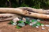 Sea Glass, Shells and Driftwood - 240803559