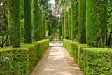Garden of the Poets, Alcazar Palace, Seville - 240804381