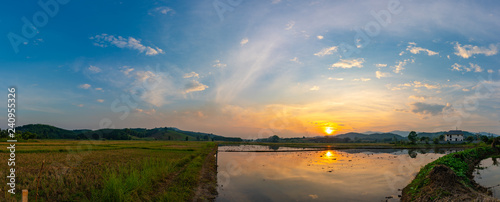 sunset in rice field , Northern of thailand