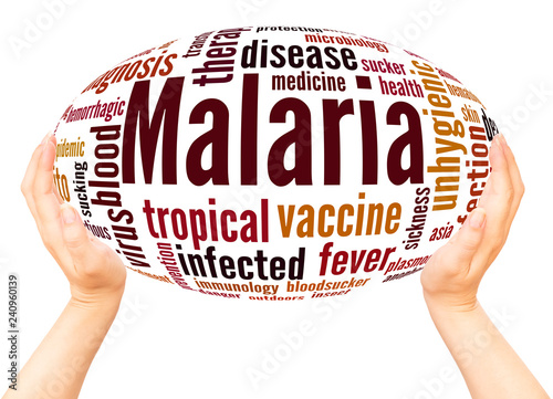 Malaria word cloud hand sphere concept - 240960139