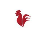 Rooster Logo Template vector illustration design