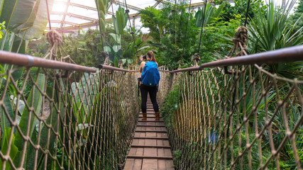 Woman with a backpack taking photographs on a suspension bridge in the jungle