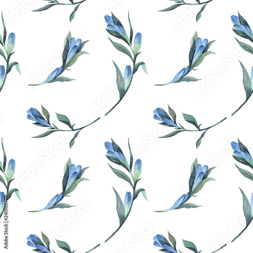 Floral pattern in watercolor style. Beautiful seamless pattern with gentian and wild herbs. Can be used as a background template for Wallpaper, printing on fabrics. - 240983709