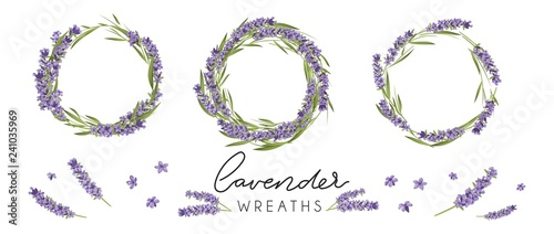 Set of cute lavender wreaths. Provence style floral design. Vector lavender flowers isolated on white background - 241035969