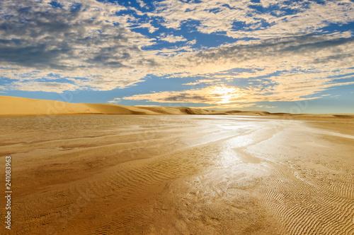 The dunes of the Sahara Desert.