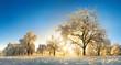 Leinwanddruck Bild - Verzauberte Landschaft im Winter