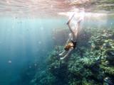 red sea people swim under water
