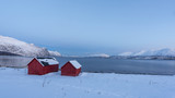 Fiord 6