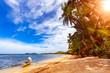 Natural Beach of Busuanga