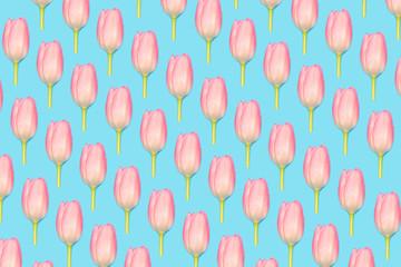 Pink tulips pattern