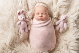 newborn girl on a white background - 241241507