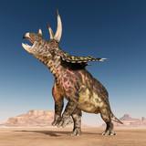 Dinosaur Pentaceratops in the desert - 241279567