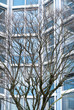 Leinwanddruck Bild - Struktur Architektur modern urban blau City
