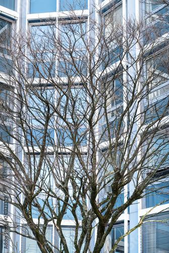 Leinwanddruck Bild Struktur Architektur modern urban blau City